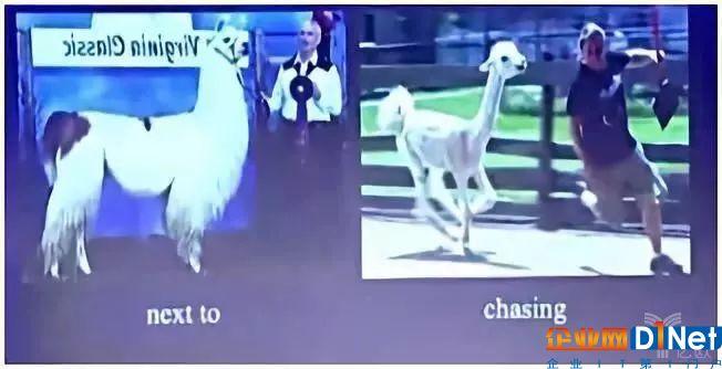 两张相似的图片呈现不同的故事